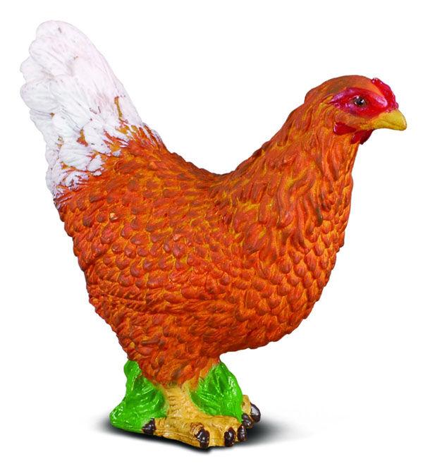 CO88005 Hen