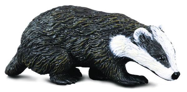 CO8815 Eurasian Badger