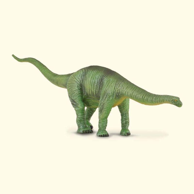 CO88253 Cetiosaurus