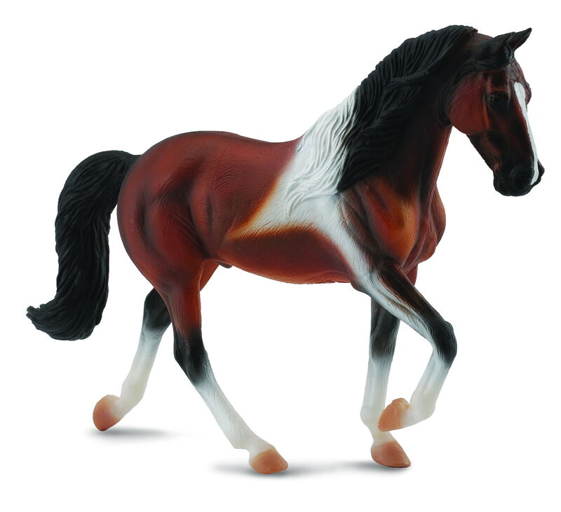 CO88450 Tennessee Walking Horse Stallion Bay Pinto XL