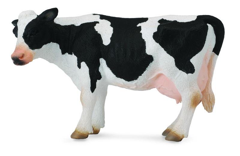 CO88481 Friesian Cow