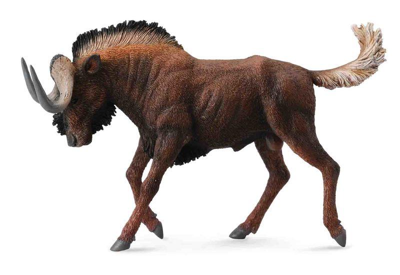 CO88542 Black Wildebeest