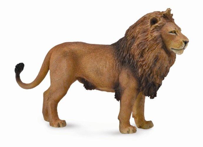 CO 88782 African Lion L