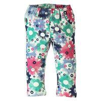219080 Floral Pant