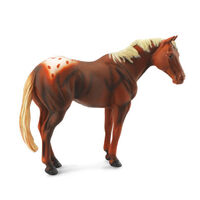 Appaloosa Stallion Chestnut (XL) CO88436