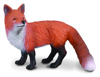 Red Fox (S) CO88001