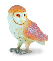 CO88003 Barn Owl