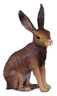 CO88012 Brown Hare