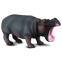 CO88029 Hippopotamus