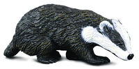 CO88015 Eurasian Badger
