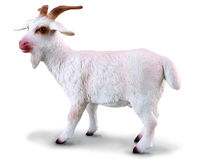 Billy Goat (M) CO88212