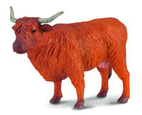 CO88232 Highland Cow