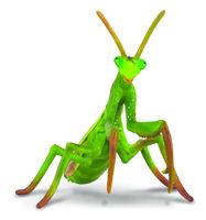 Praying Mantis (L) CO88351