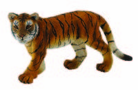 CO88413 Tiger Cub Walking
