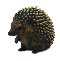 CO88458 Hedgehog