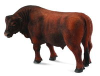 CO88508 Red Angus Bull