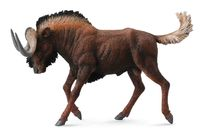 Black Wildebeest (L) CO88542