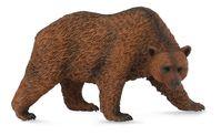 Brown Bear (M) CO88560