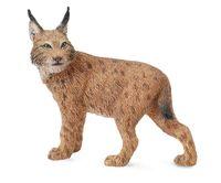CO88565 Lynx
