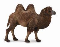Bactrian Camel (XL) CO88807