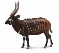 Bongo Antelope (XL) CO88809