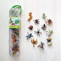 Insects and Spiders 12 pce Gift Set CO89A1106