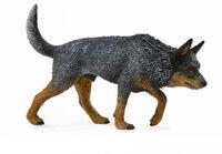 Australian Cattle Dog (L) CO 88672