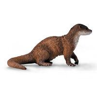 Common Otter (M) CO88941