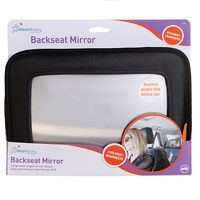 F291 Backseat Mirror