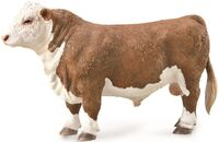 HEREFORD BULL POLLED (L)  (CO88861)