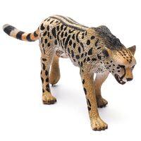 King Cheetah (L) CO88608