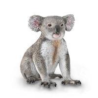 Koala (M) CO88940