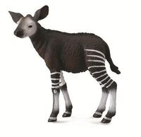 Okapi Calf (M) CO88533