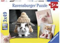 RB080281 Funny Animal Pics 3x49 pc