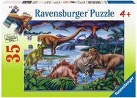 RB086139 Dinosaur Playground 35pc Puzzle