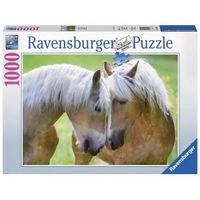 RB194858 A Moment Together 1000pc