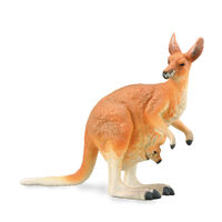 Red Kangaroo- Female With Joey (L) CO88921