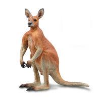 Red Kangaroo - Male (L) CO 88942