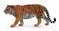 Siberian Tiger (XL) CO88789