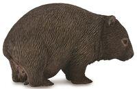 Wombat (M) CO88756