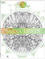 Zen Colour: Succulents